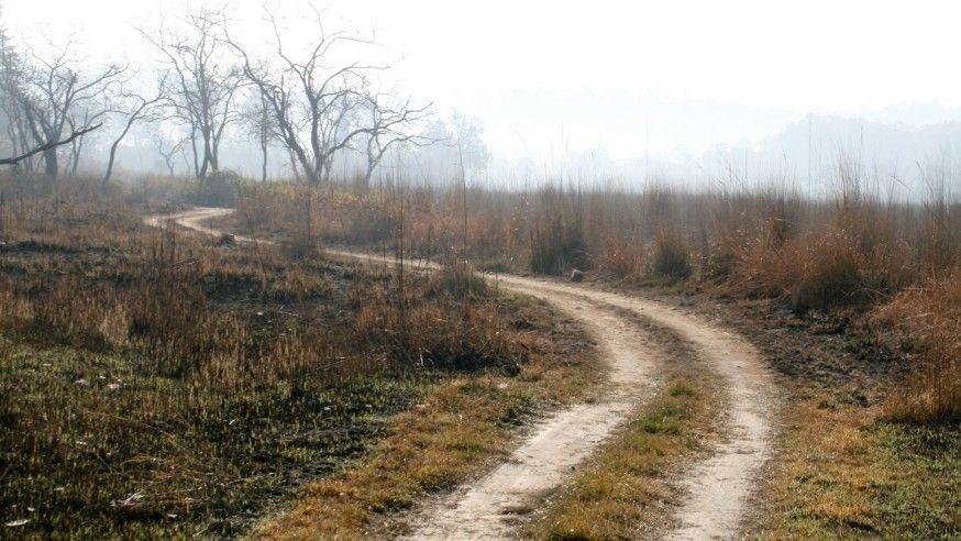 Ramnagar – Wildlife and bird watching at its best!
