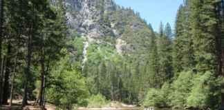 Yosemite National Park : News Coverage Travelplanet