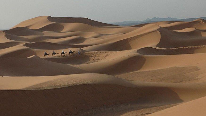 Exploring World's Hottest Sahara Desert