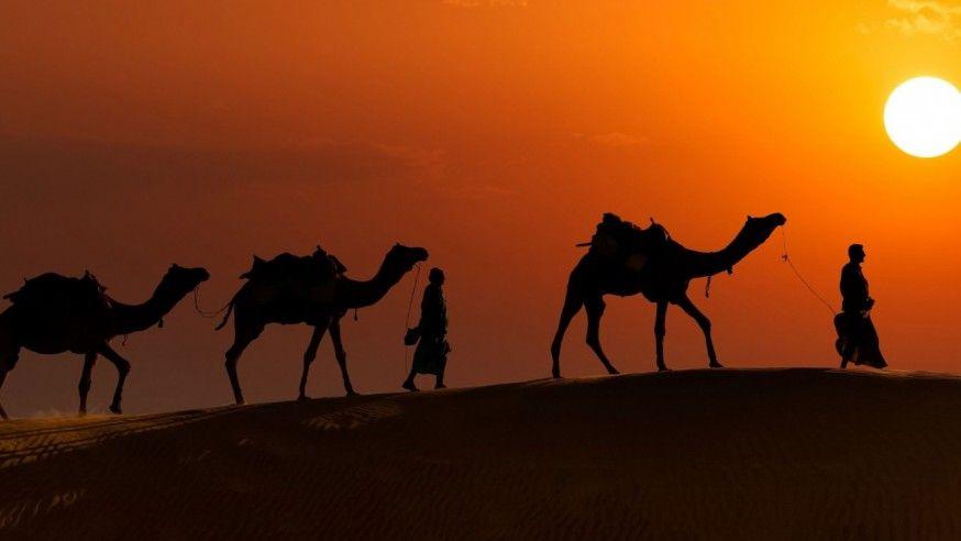 A night under the stars: Thar Desert