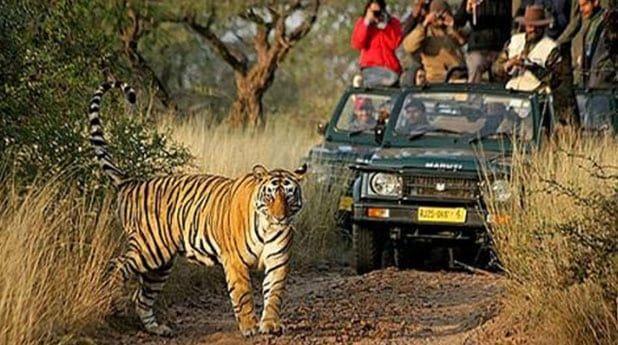 Dudhwa Tiger Reserve View