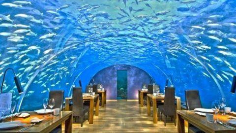 Unique Restaurants in the world