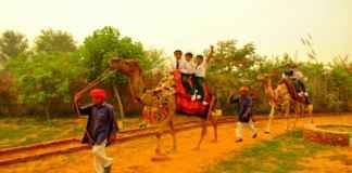 Pratapgarh farm