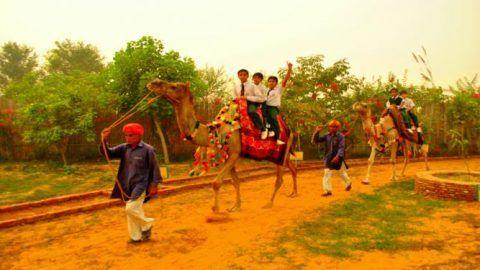 Holi Weekend Destination: Pratapgarh Farms