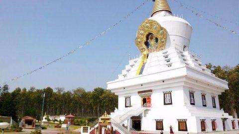 6 Must Visit Places In Dehradun