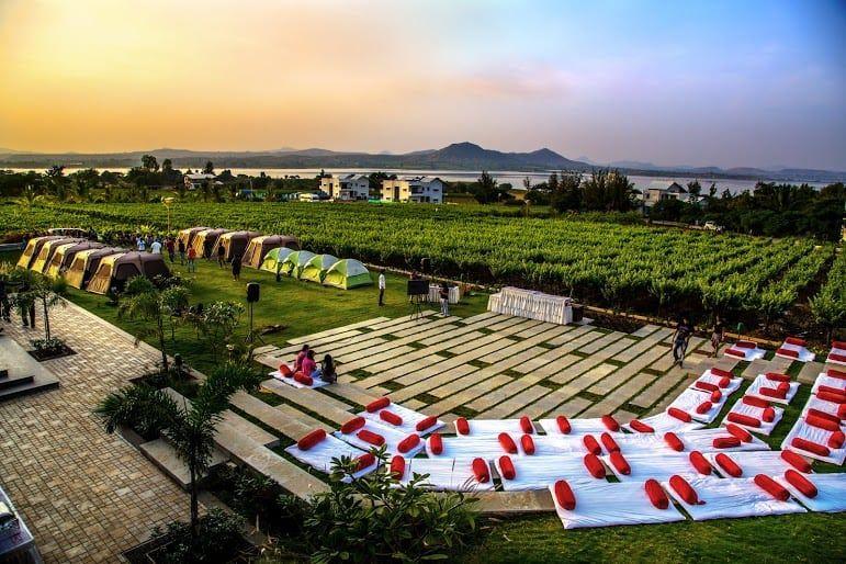 Have a Nashik Wine Trip,