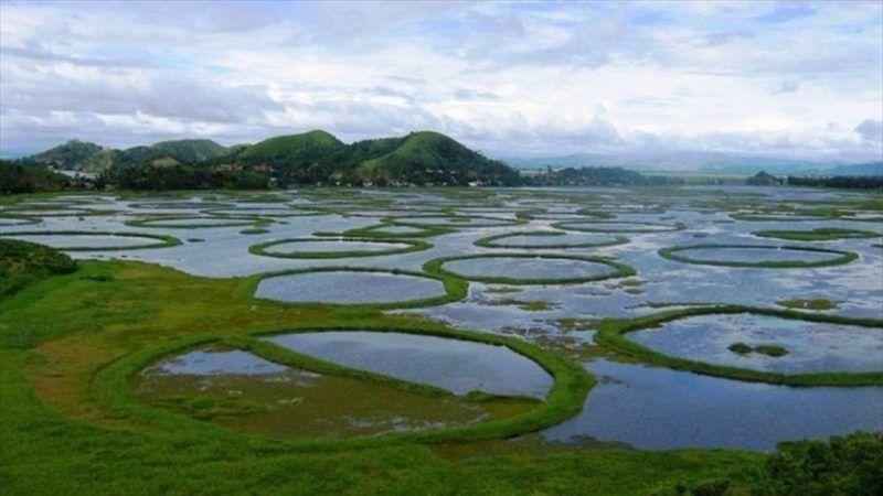 Keibul Lamjao, Manipur,