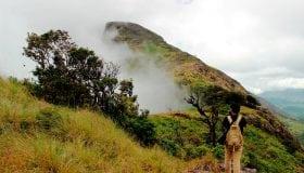 Chokramudi peak