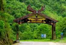 Nagaland,