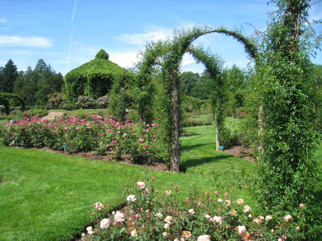 Best Rose Gardens Across The World Travelplanet